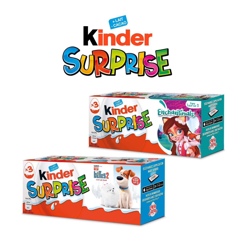 Kinder surprise T3 Licence Fr